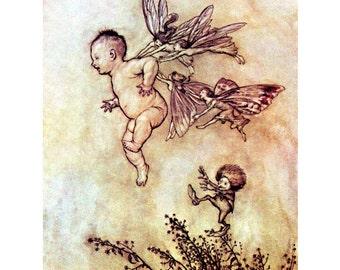 Fairy Fabric Block - Arthur Rackham - Peter Pan Tickled by Fairies in Kensington Gardens