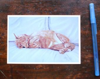 "Lazy Kitty: 4"" x 6"" Print"