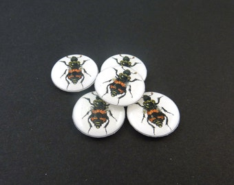 "Black and Orange Bug Buttons.  5 Handmade Buttons for Sewing.  3/4"" or 20 mm.  Handmade By Me.  Washer and Dryer Safe."
