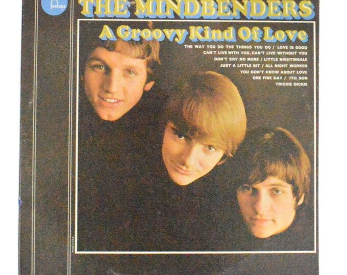 Vintage 60s The Mindbenders A Groovy Kind of Love Mono Album Record LP