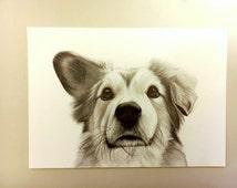 Custom drawing/ pet portrait/ from photo/mini portraits/minimal/ animal drawing/ photo to drawing/colors/ memorial pet/ gift idea