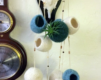 Air Plant Hanger - Hand Felted