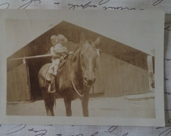 Vintage Photo Children on a horse