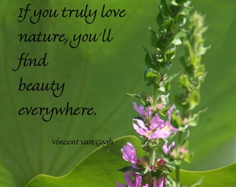 If You Truly Love Nature