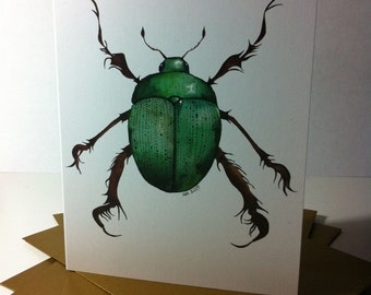 CHRISTMAS BEETLE Christmas cards, set of 5 with gold envelopes