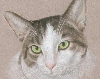 Custom Pet Portrait, Pastel Pet Portrait, Hand Drawn, Original Art from Your Photos