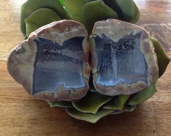 "BIG WINDOW - Australian Ryolite, Crystal Smoky Quartz ~ Rainforest Jasper Thunder Egg, Mt Hay ~ ""Stone of Resolution and Perserverance"""
