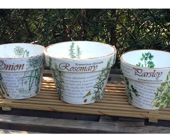 Set of Three Botanical Script Herbal Flower Pots, Dictionary Verse Cache Pot, Country Farmhouse Cottage, Rosemary, Parsley & Onion Herb Pots