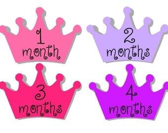 Milestone Sticker- Baby Month Stickers- Baby Girl Month Stickers- Monthly Stickers- 12 month stickers- Milestone Baby Month Stickers- G45