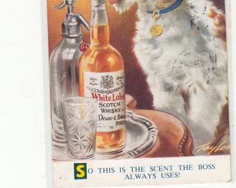 "This Fox Terrier Is A One Off ""So This Is The Scent The Boss Always Uses 1950s Vintage Postcard"