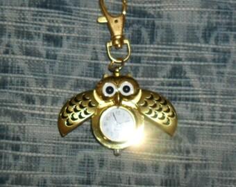 shows Pocket OWL gold.
