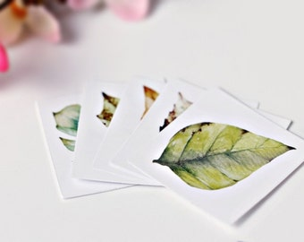 40 Leaves Stickers - Plants Seal - Gift Wrapping - Scrapbooking - Envelopes Decoration