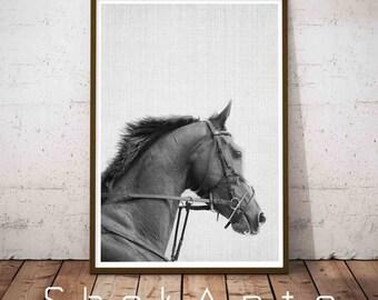 Horse Print, Horse Photo, Horse Photography, Horse Art, Black Horse, Instant Download, Horse Printable Art, Black And White Prints