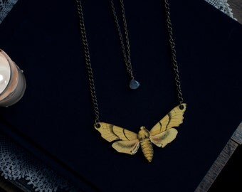 Large moth vintage natural illustration laser/woodcut with labradorite teardrop layered necklace