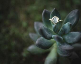 Anello in oro verde 18k con pietra di luna