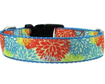 Orange and Blue Floral Burst Dog Collar