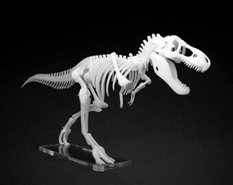 Tyrannosaurus Rex Kit