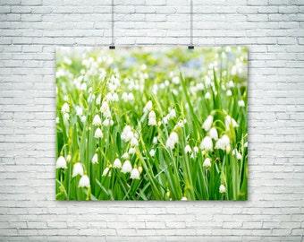 Nature Photography - Bell Flowers - Flower Art - Home Decor - Fall Wall Art - White - Bells - Green - Angelic