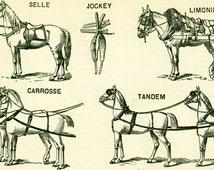 1897 Horse Harness Plow Horses Large Size illustration, original Larousse print, french antique, framing 115 years old