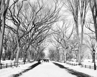 New York City Photography, Snowy Day in Central Park, NYC Black and White, Central Park Photography