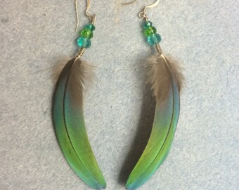Bluish green macaw feather earrings adorned with blue and green Czech glass beads.