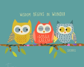 Three smart owls