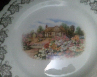 Elijah Cotton Lord Nelson Ware Plate
