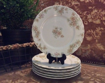 """Limoges Haviland & Co. """"The Countess"""" Luncheon Plates"""