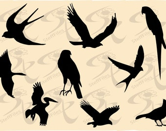 0017_Birds,SVG,DXF,AI, png, eps, jpg, Vector Silhouettes,Download files, Digital, graphical