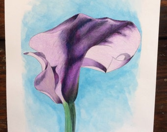 Water Color Calla Lilly - Purple