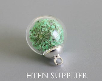 10 sets 16mm Clear Glass Globe Bottle Pendant Green real dry Queen Anne's lace flower