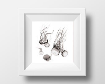 Artprint Jellyfish on uncoated bright white paper 160 g/m2