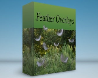 Small feather overlay PNG files