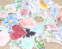 30 Pieces of Secret Garden Cardboard Cut Outs, Feathers, Flowers, Cardmaking, Scrapbooking, Crafting, Good Luck, Pastel Colour