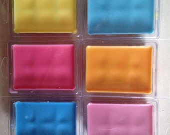6 cavity clamshell wax melts.