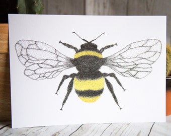 Bumble Bee - Insect - Art Print