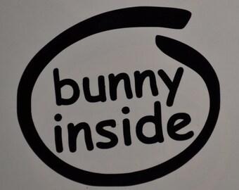 Bunny Inside Decals