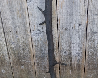 "27"" Lightning-Struck Tree Branch"