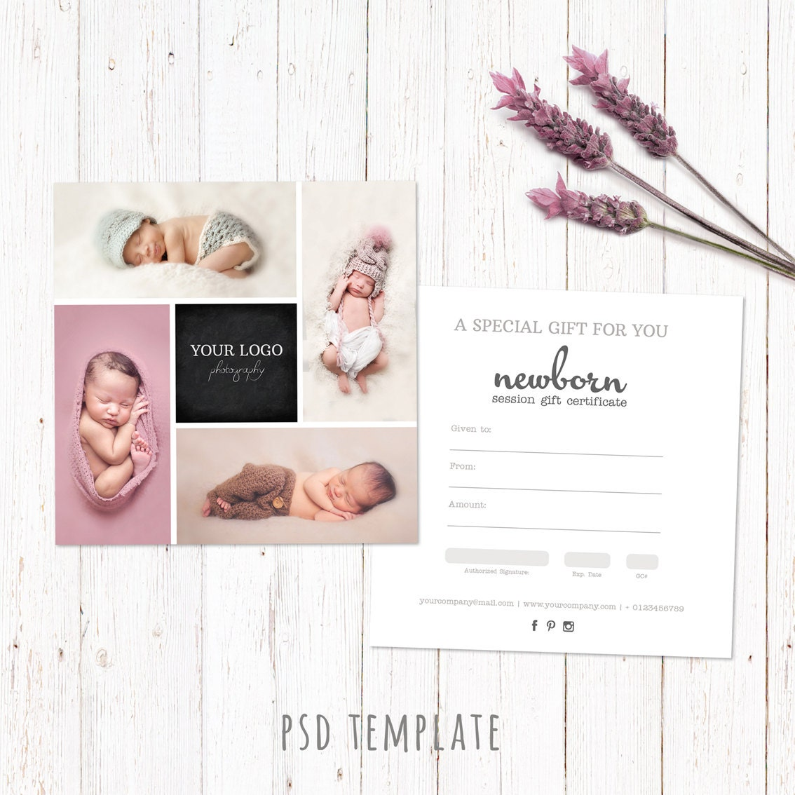 photoshoot gift certificate template - gift certificate template newborn session photography gift