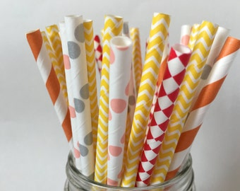 Winnie The Pooh Paper Straws, Winnie the Pooh Theme, Birthday Party, Kids Party, First Birthday, Party Decor, Play Date,Party Decorations,30
