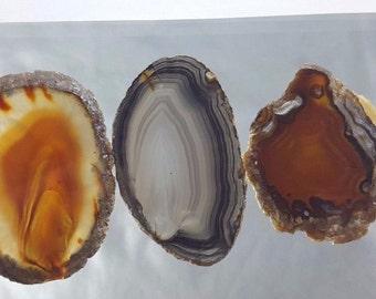Natural Brazil Agate Slices Geode Polished Slab Quartz Lot (5) - N8