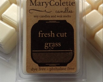 Fresh Cut Grass Scented Soy Wax Melt   Non Toxic Wax Melt   Summer Candle   Eco Friendly Soy Wax Melt   Summer Scent  