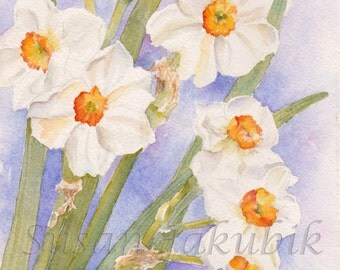 Narcissus Watercolor Painting, Daffodil Giclee Print