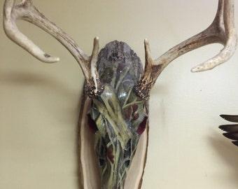 Hand Painted Deer Skull