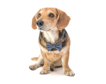 """Grey dog bow tie with dots  - 30% of sales donated to dog shelters """"dog bow tie"""" symbol for animal support"""