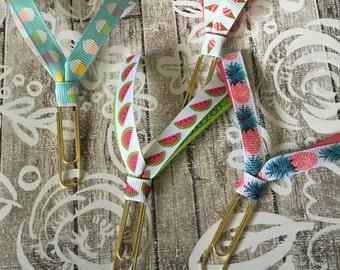 Summer Ribbon Clips