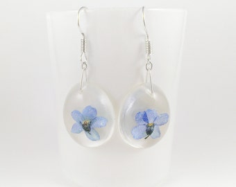 Flowers earrings forget-me-not