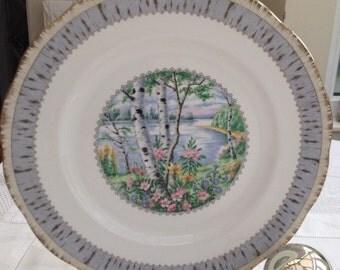 Lovely Large Vintage Royal Albert 'Silver Birch' Plate, Cake Plate, Bread Plate