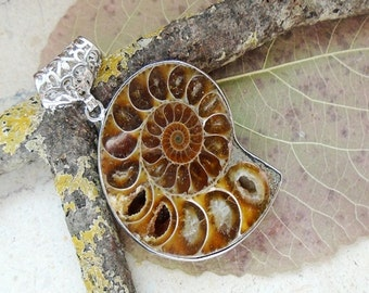Plated Ammonite fossil, pendant, silver
