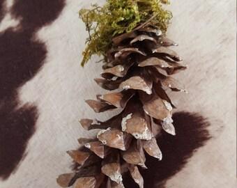 Rustic Pine Cone Ornament